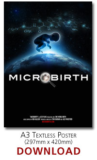 Microbirth A3 poster (no text)