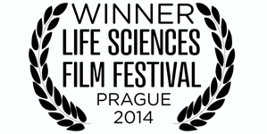 Microbirth wins film festival